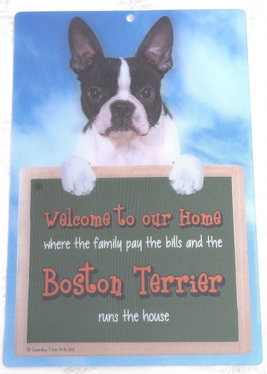BOSTON TERRIER 3D WELCOME SIGN STUNNING EYE CATCHING 23CM X 15CM DURABLE SIGN